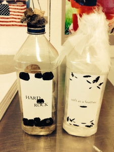 Conceptual Bottles : HARD / soft