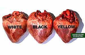 kalman-hearts