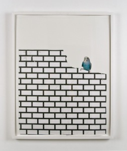Frances Stark, Birds and Bricks, 2008